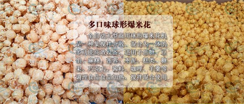 爆裂玉米球形爆米花机 隆泽厂家直销 爆米花生产线 大型爆米花机示例图10