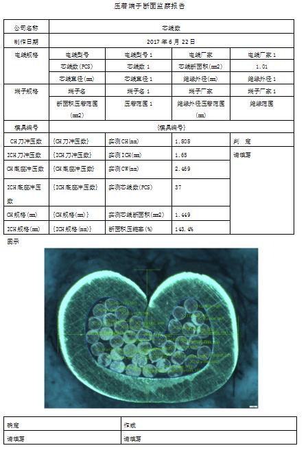 蔡康端子分析系统DZ-3000示例图3