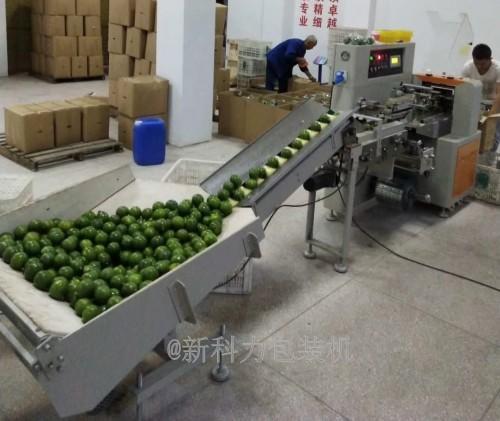 唐氏智能柠檬打包自动包装机 柠檬打包装袋机械 柠檬套袋机价格  柠檬包装套袋厂示例图4