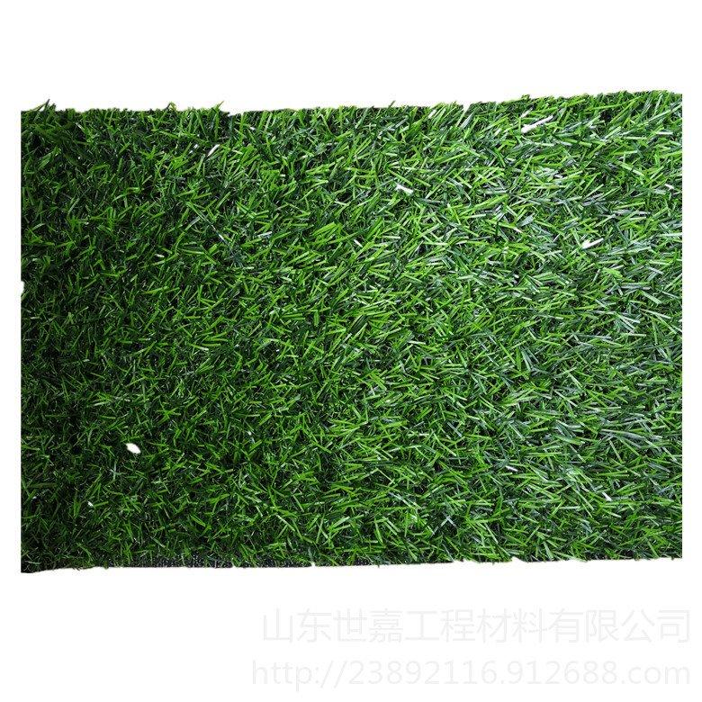 人造草坪,山東世嘉,人造草坪廠家,塑膠跑道人造草坪 室內人造草坪 人造草坪地毯 人工假草皮圖片
