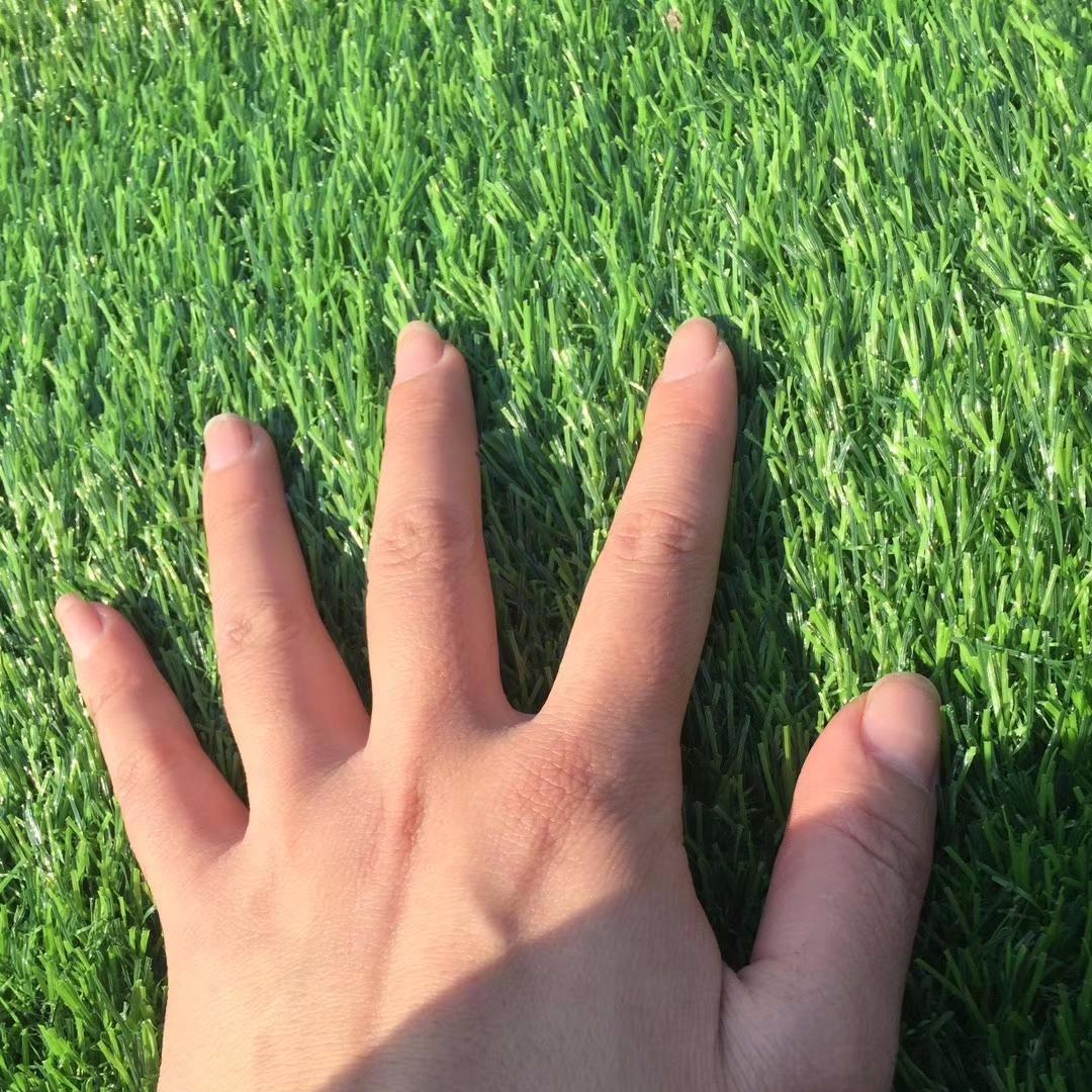 人造草坪地毯仿真草坪地毯幼兒園草坪塑料假草坪假草皮綠色裝飾草坪圖片