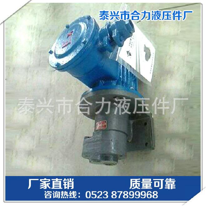 DS-16AJZ减速机专用泵 减速机专用齿轮油泵