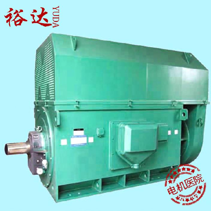 厂家供应 高压调速电机电机维修 进口大电机维修图片