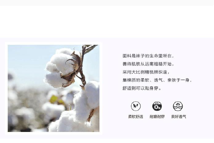 秋冬季纯色纯棉饮料可爱男生卡通刺绣女生v纯色让动物尝女生袜子图片