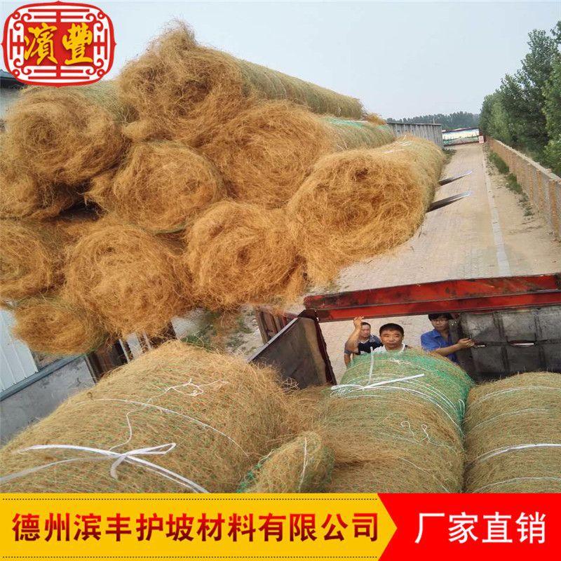 滨丰生态毯 环保护坡 荒山治理 椰丝草毯 厂家直销示例图7