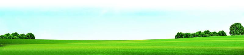 植草袋厂家 滨丰护坡专用植生袋 广东草种植生袋 绿色护坡袋 环保绿化植生袋示例图20