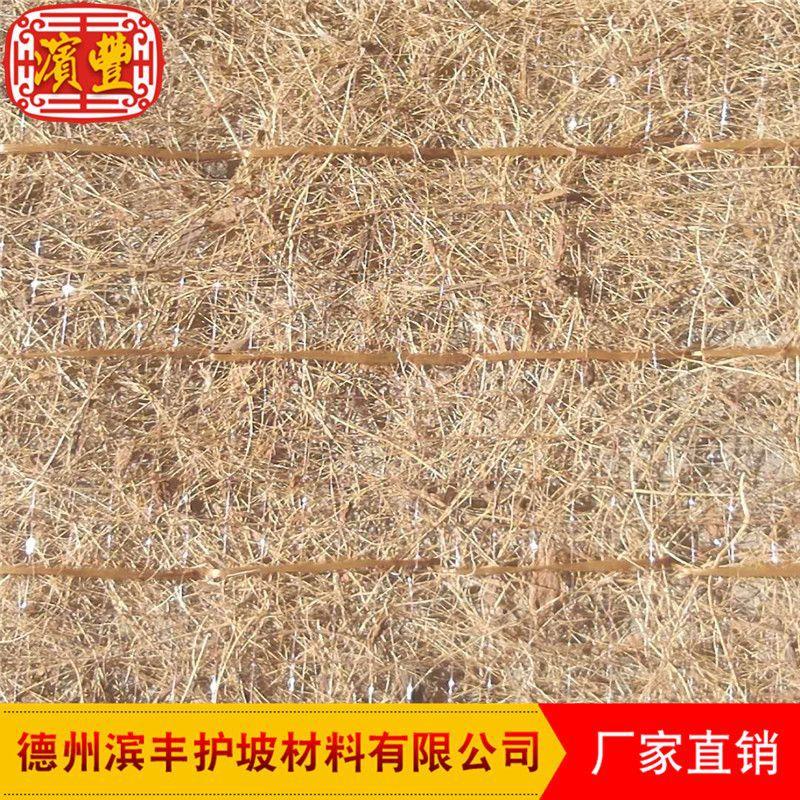 滨丰生态毯 环保护坡 荒山治理 椰丝草毯 厂家直销示例图4