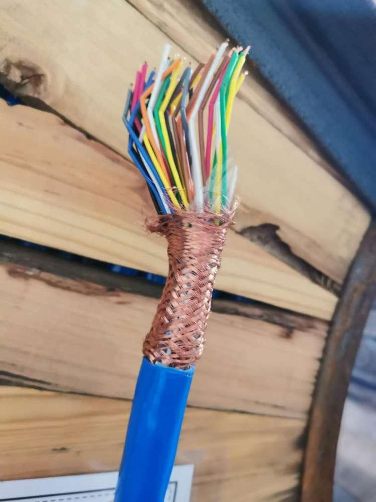 WDZ-DJYPV低烟无卤屏蔽电缆示例图4