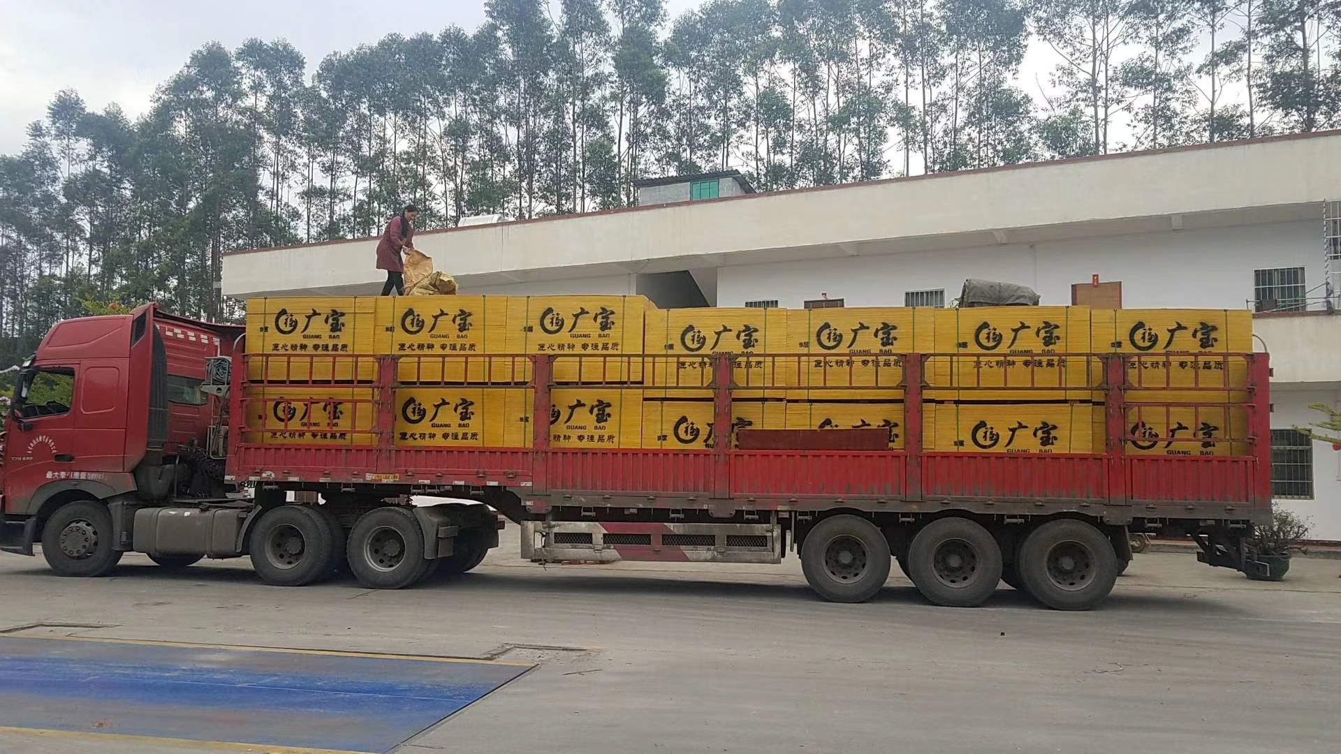 建筑模板  酚醛面红板  广福木业覆膜板胶合板广西红板建筑模板示例图5