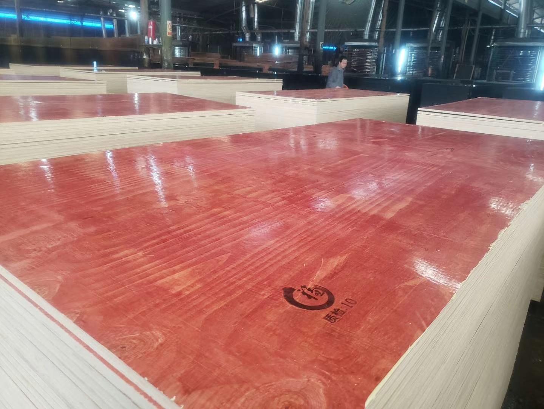 建筑模板  酚醛面红板  广福木业覆膜板胶合板广西红板建筑模板示例图6
