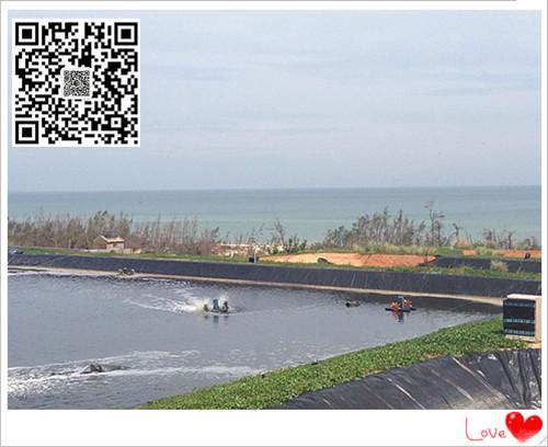 欢迎咨询安徽黄山黑膜沼气池建设hdpe防渗土工膜生产厂家直销电话示例图6