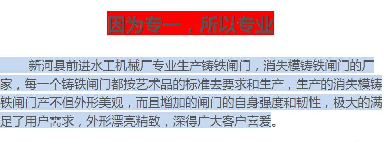 天津铸铁闸门 渠道铸铁闸门,铸铁镶铜闸门示例图12