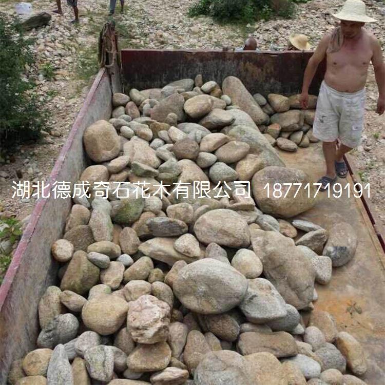 鹅卵石批发鹅卵石价格鹅卵石示例图7