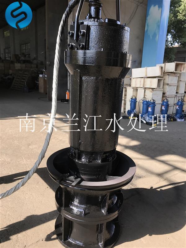 南京兰江悬挂式潜水轴流泵,管道泵示例图3