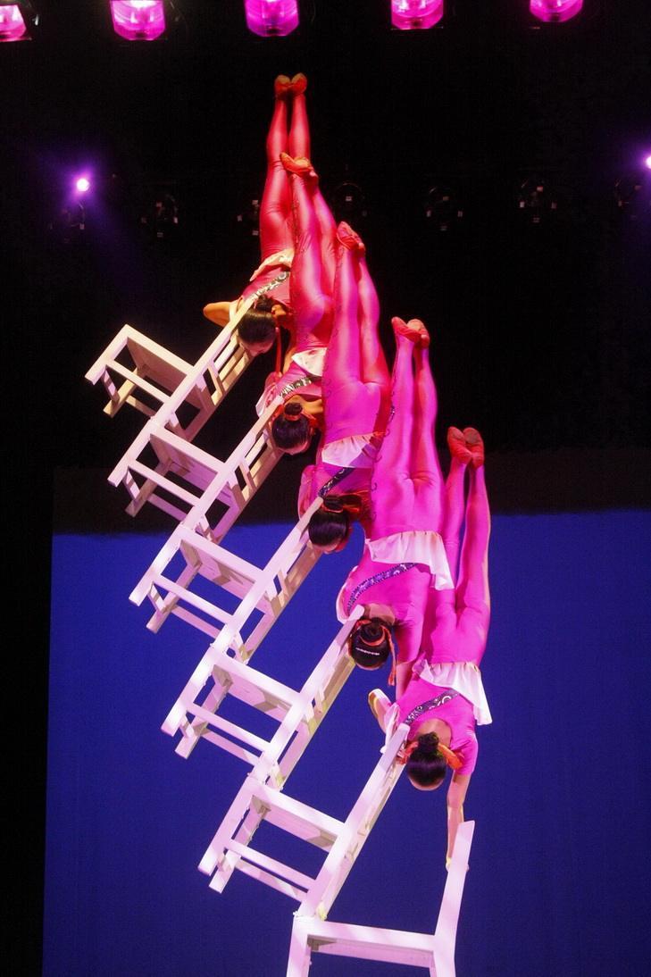 河南 马戏团表演 外出表演 全国各地演出 欢乐马戏嘉年华  马戏欢乐节表演 艺术表演 展示型外出表演一站式服务示例图1