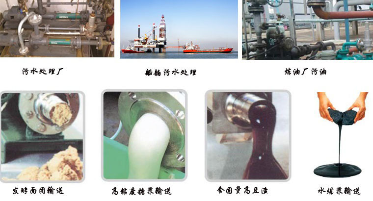 销售立式单螺杆泵属转子式容积泵-远东泵业示例图2