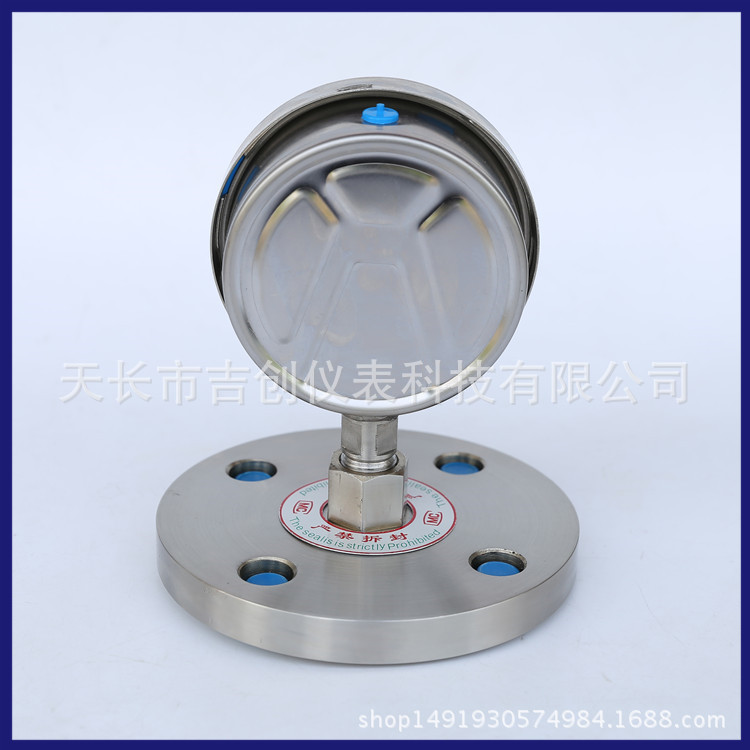 厂家直销不锈钢耐震隔膜压力表 YN-100/MF/DN50 耐震隔膜压力表示例图5