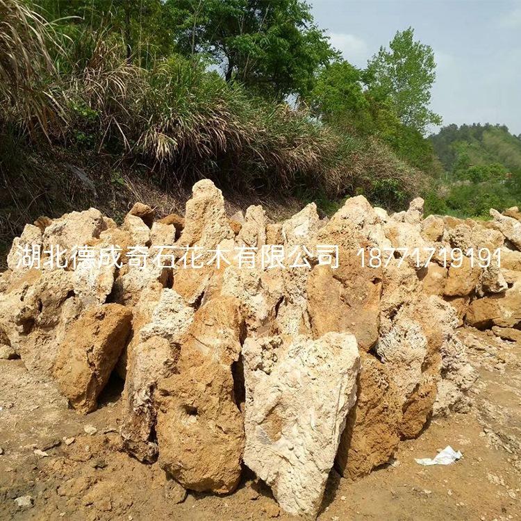 上水石价格上水石批发吸水石价格吸水石批发吸水石假山示例图4