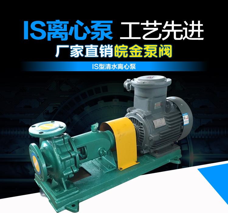 皖金大流量清水泵,清水泵規格型號,is臥式水泵,防腐管道泵,鑄鐵泵型號示例圖1