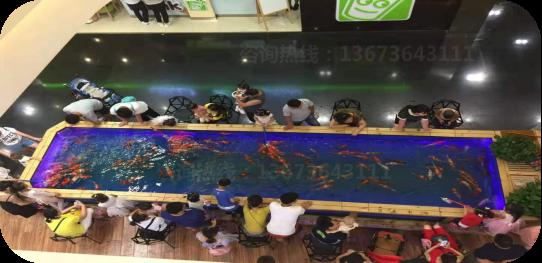 河南 郑州2020 吃奶鱼 游乐设施  儿童吃奶鱼设施厂家 批发价格示例图10
