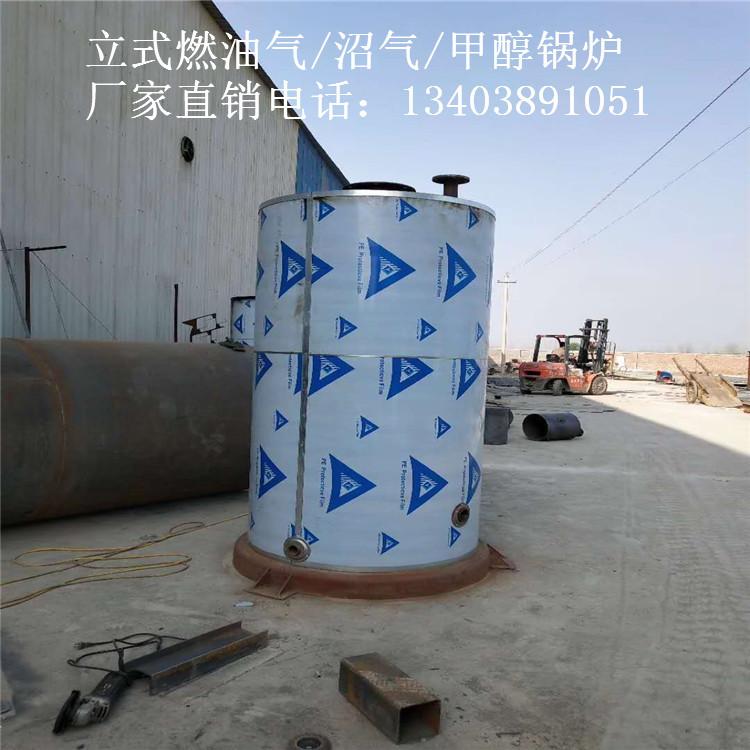 甘肃庆阳市3吨及以下醇基供暖锅炉与燃气锅炉合作示例图4