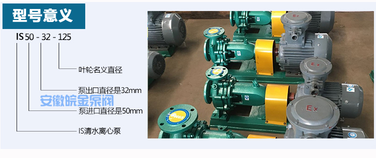皖金大流量清水泵,清水泵規格型號,is臥式水泵,防腐管道泵,鑄鐵泵型號示例圖3