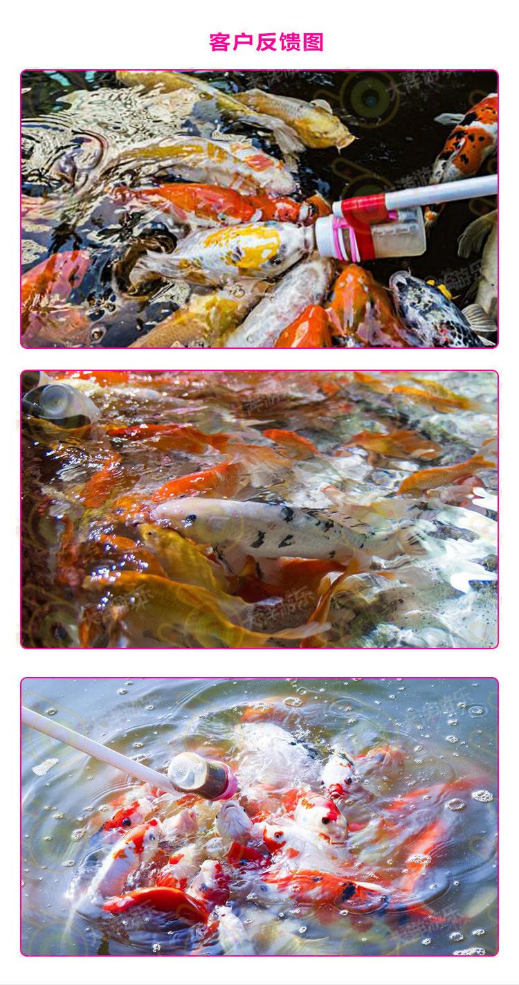 吃奶鱼,室内儿童游乐吃奶鱼,吃奶鱼游乐设备,吃奶鱼水上世界,吃奶鱼水族乐园,新型项目吃奶鱼,大洋水族吃奶鱼欢迎你示例图14