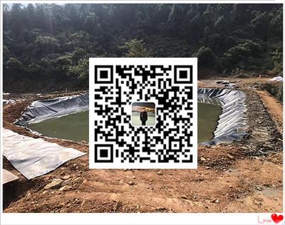 安徽黄山黑膜沼气池施工  沼气池设计  沼气池安装公司示例图8