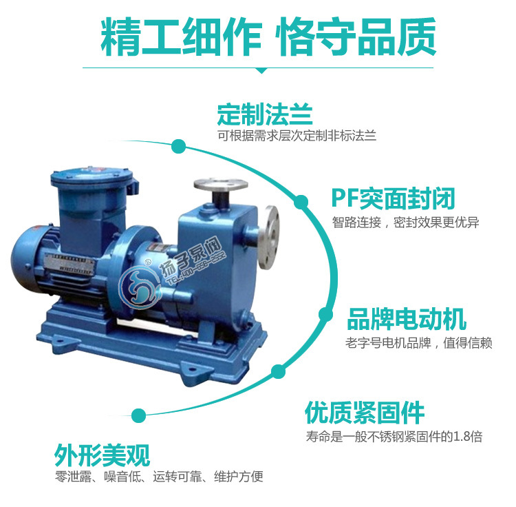 无泄漏防爆自吸泵制造商 ZCQ65-50-145自吸式不锈钢耐腐蚀磁力泵示例图9