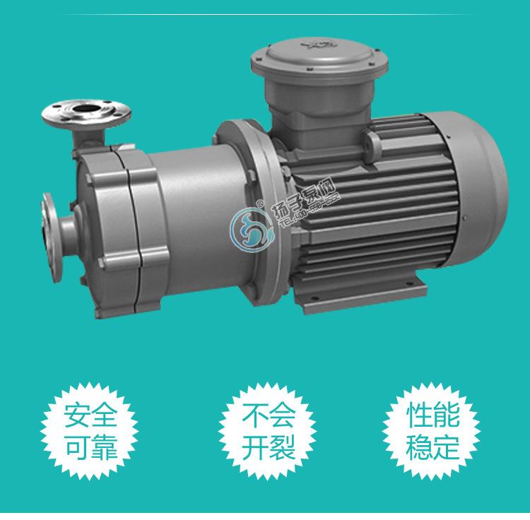 扬子CQ普通型304不锈钢磁力泵 316防腐蚀磁力泵 无泄漏磁力驱动泵示例图4