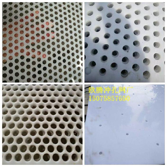塑料冲孔网发布图1.jpg