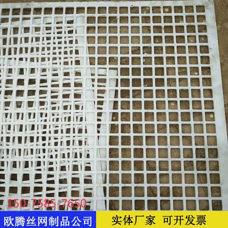 塑料冲孔网50.jpg