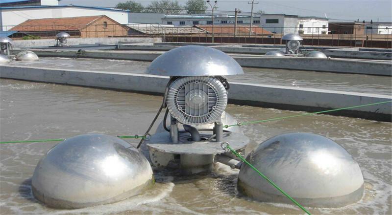 水产养殖专用风机/高压风机/高压鼓风机现货示例图4