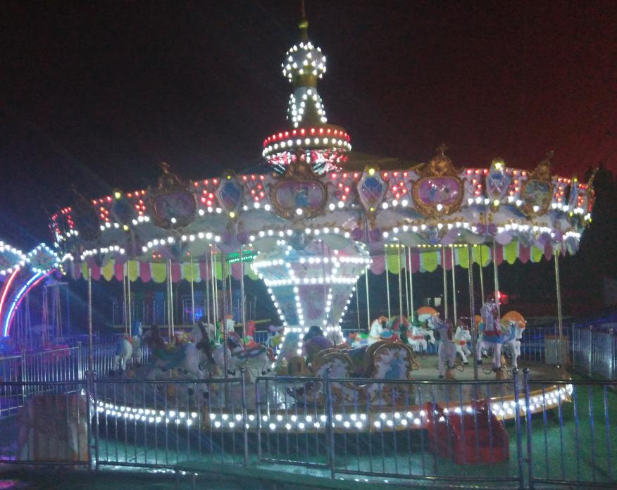 新款16座豪华转马夜景图片 儿童游乐设备旋转木马大洋生产厂家示例图4