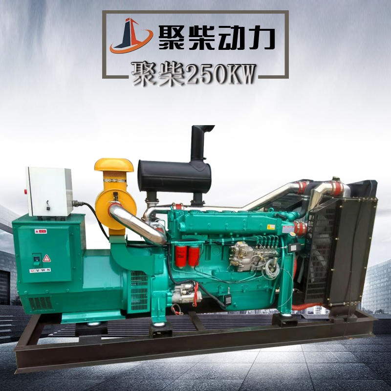 250KW通柴柴油發電機組 250KW國產發電機組價格 250千瓦發電機報價