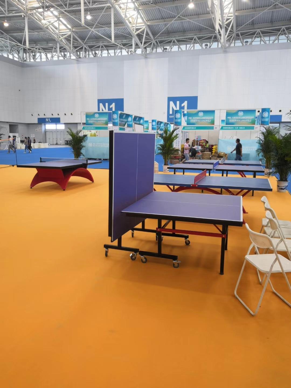 特价供应室内可移动乒乓球桌 家用标准乒乓球台 物美价廉售后无忧示例图7