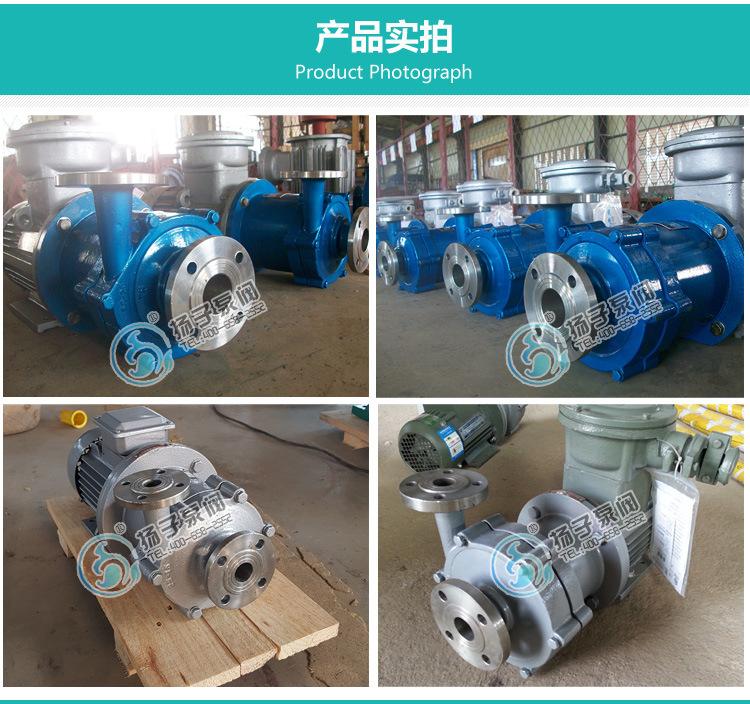 扬子CQ普通型304不锈钢磁力泵 316防腐蚀磁力泵 无泄漏磁力驱动泵示例图11