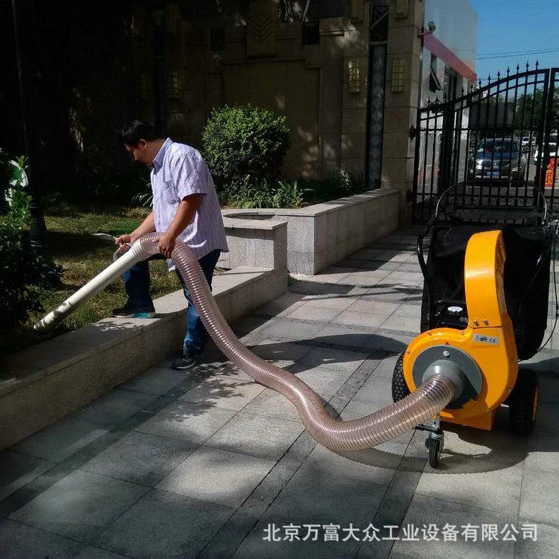 电动过滤吸叶机 落叶清扫设备公园道路吸叶机不扬尘 吸叶机批发示例图5