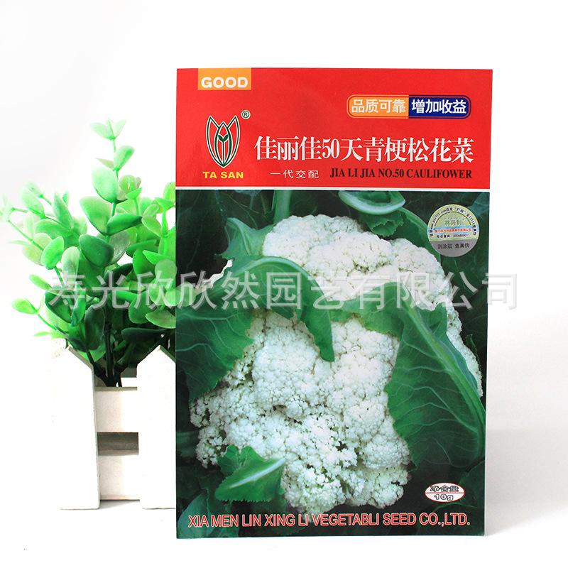 嘉利嘉50天龄花椰菜种子中熟品种具有较强的抗逆性