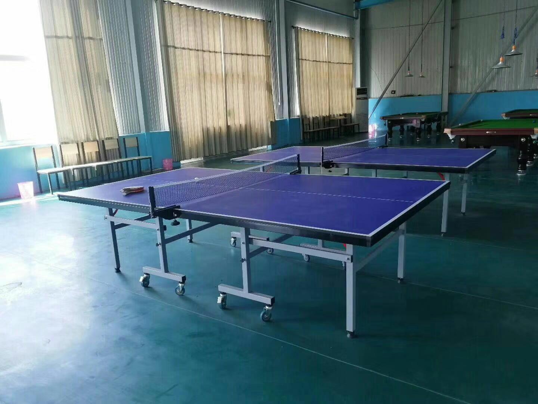 特价供应室内可移动乒乓球桌 家用标准乒乓球台 物美价廉售后无忧示例图11