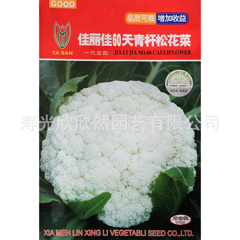 佳丽嘉60日龄花椰菜,甘蓝种子早熟,对花椰菜抗性强