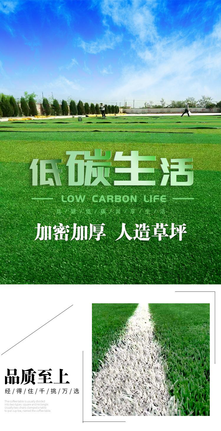 仿真草坪人造草 假草坪地毯 幼儿园彩色草皮人工塑料假草绿色户外示例图1