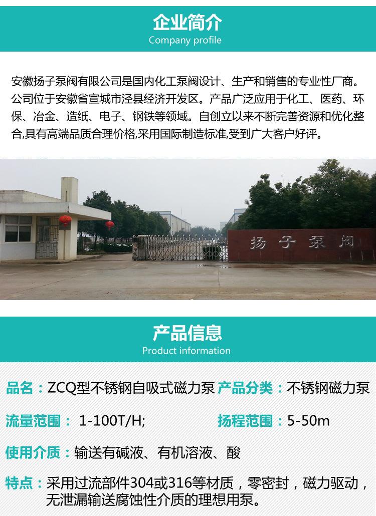 安徽厂家直销 ZCQ32-25-145型不锈钢自吸式磁力驱动泵耐腐泵批发示例图2
