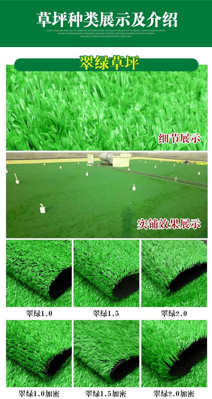仿真草坪人造草 假草坪地毯 幼兒園彩色草皮人工塑料假草綠色戶外示例圖11