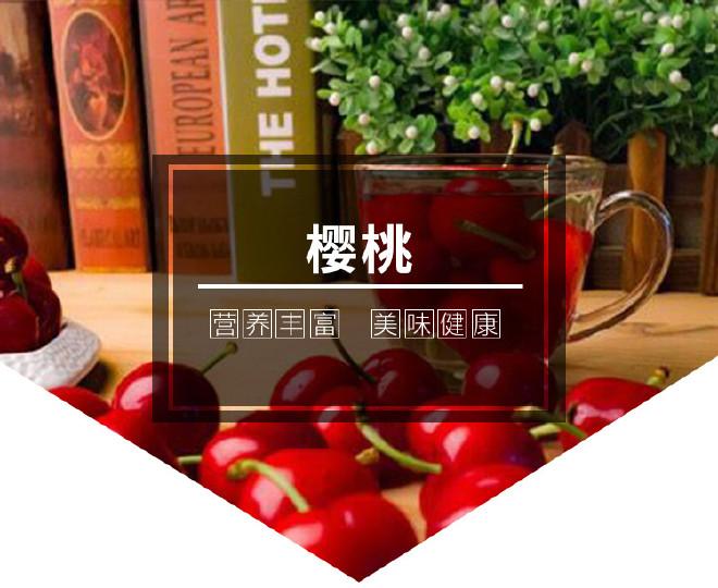直銷櫻桃樹苗 嫁接車厘子櫻桃樹 品種純正 成活率高 美早櫻桃樹示例圖1