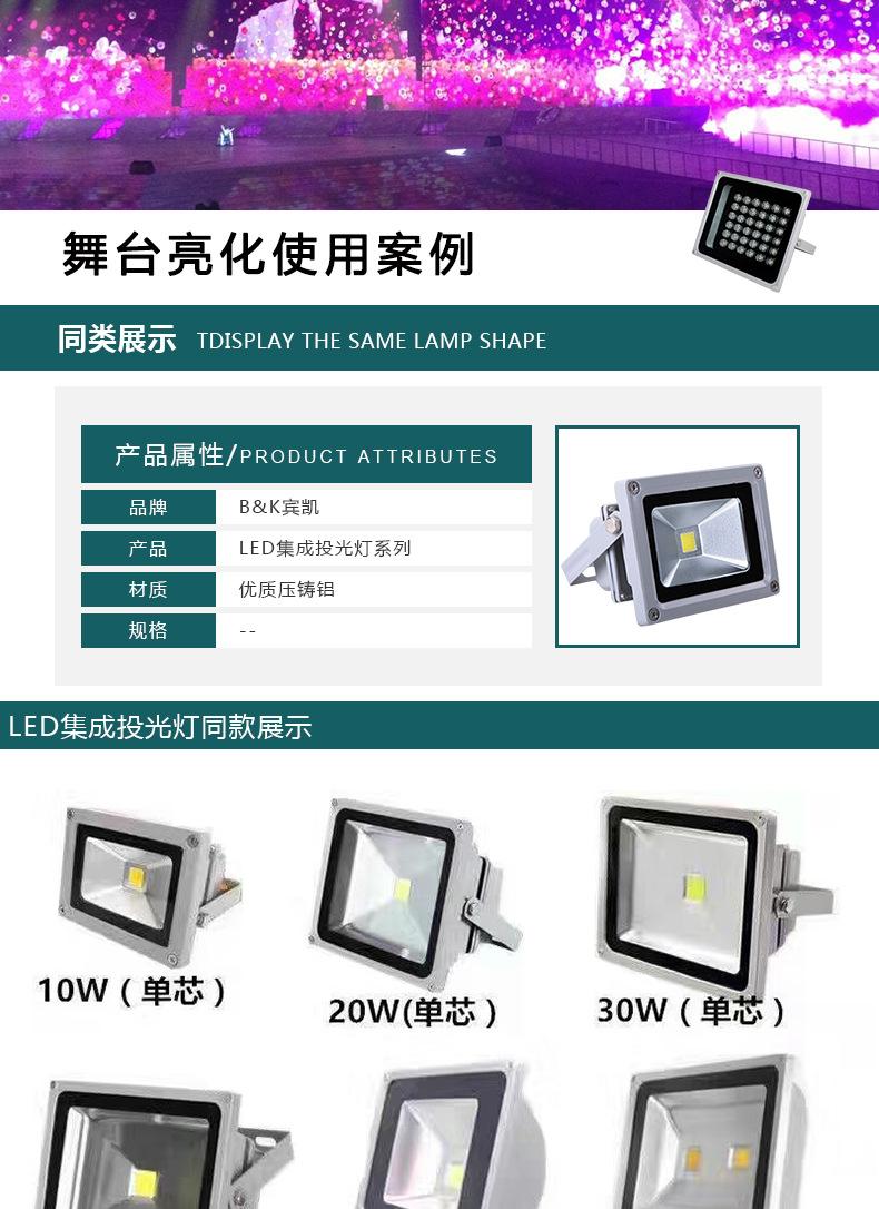 厂家批发户外照明防水 LED 50W大功率集成投光灯 LED集成投射灯示例图7