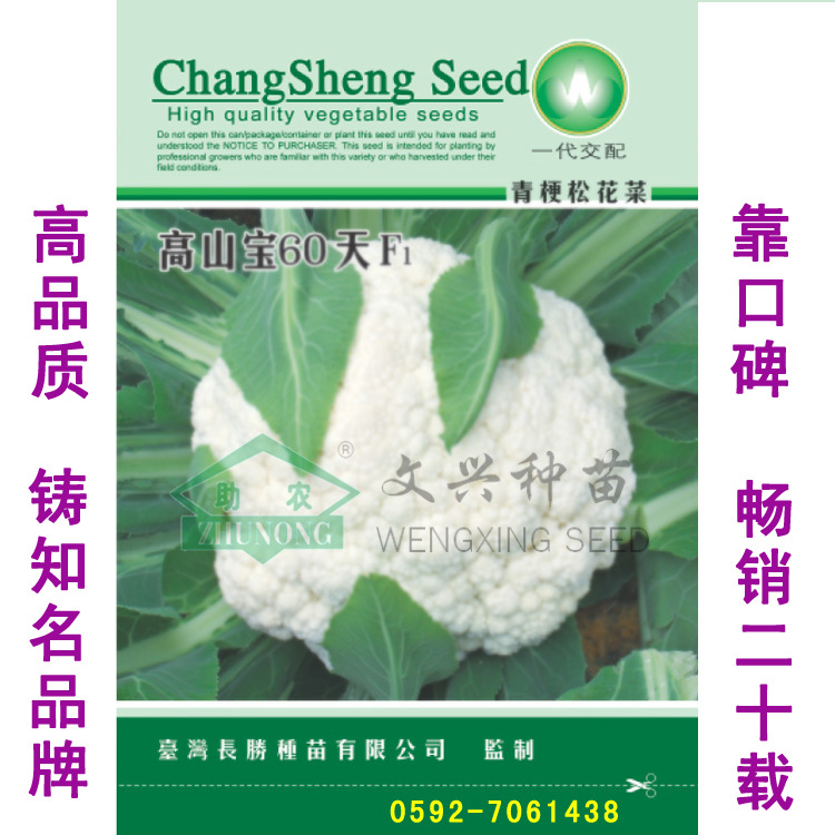 绿茎松花高山宝60天松花种子在渡边夏菜高原畅销松花种子