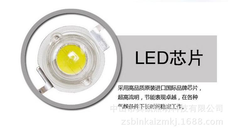 LED投射灯3w6w户外防水地插灯 草坪投射灯圆形插地灯花园射树灯示例图6