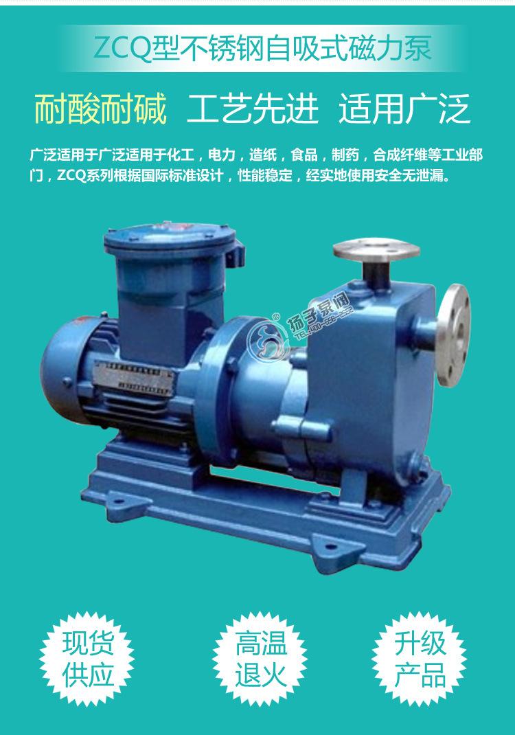 安徽厂家直销 ZCQ32-25-145型不锈钢自吸式磁力驱动泵耐腐泵批发示例图3