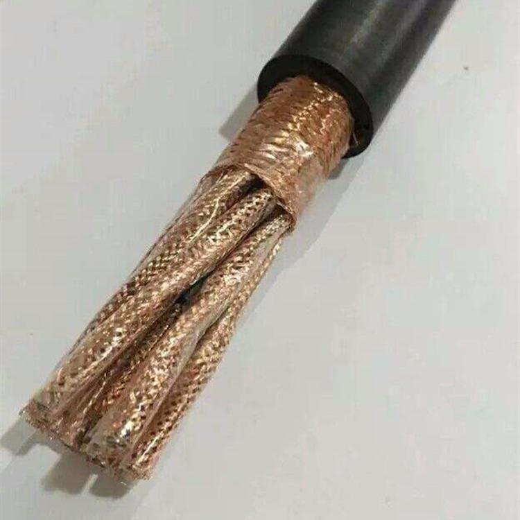 鼎輝 鎧裝計算機用軟電纜 DJYVPR22